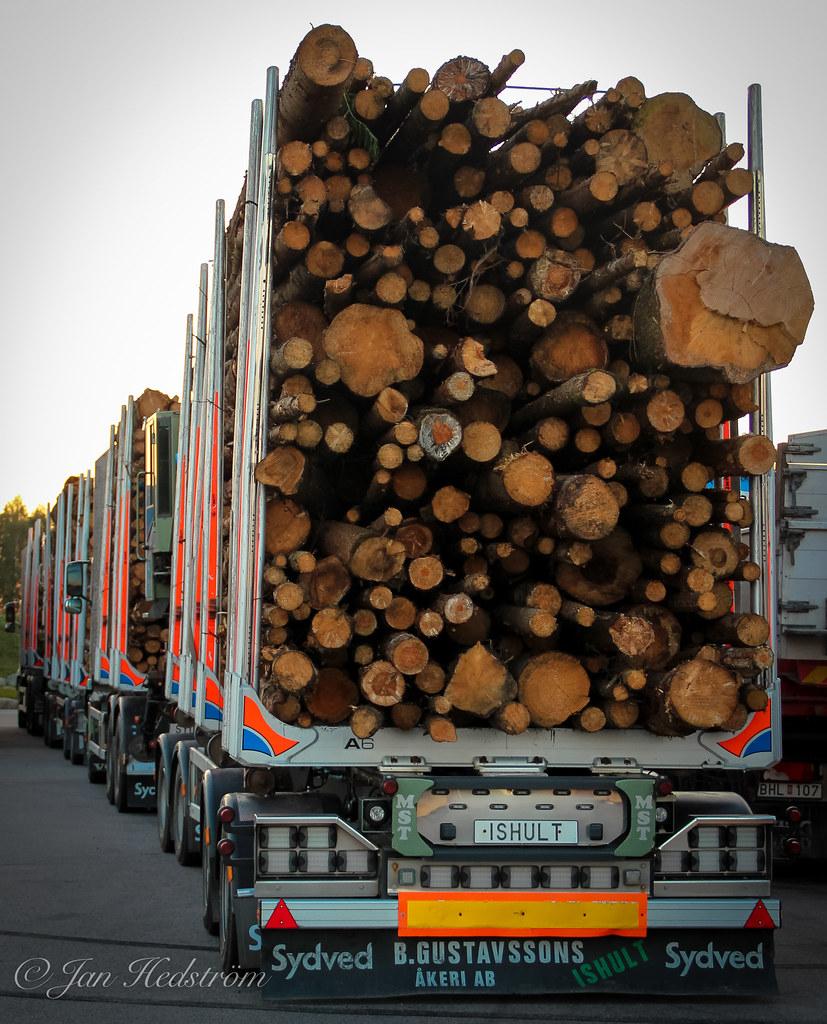 """Foto: """"Deforestation"""" by Jan Hedström is licensed under CC BY 2.0"""